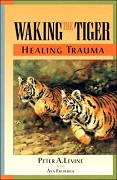 waking the tiger cover